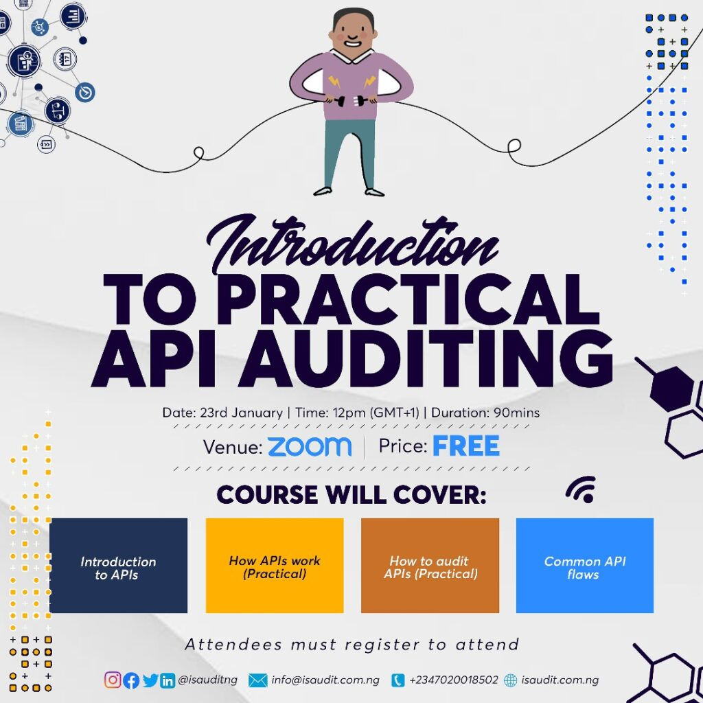 Introduction to Practical API Auditing